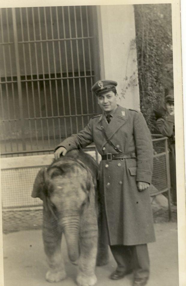 Babbo con elefantino a Roma 1950