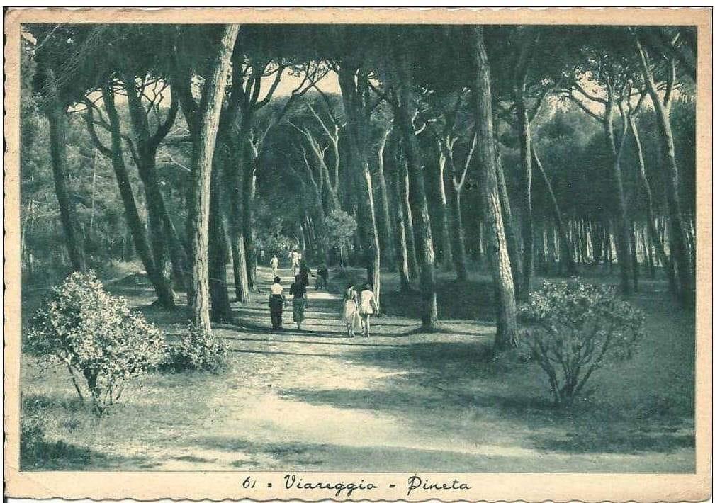 La Pineta negli anni '30