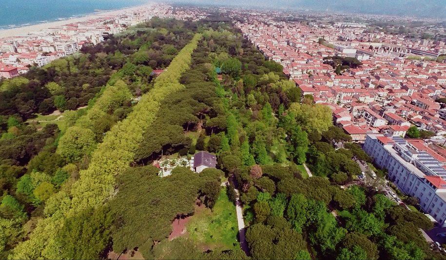Veduta aerea della Pineta di Ponente